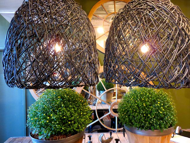 Recycled Branch Chandeliers